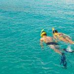 scuba diver & snorkler