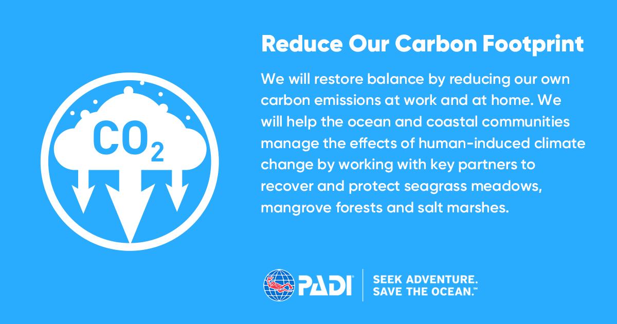 Reduce our carbon footprint_Icon_Title_Description