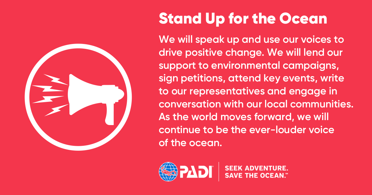 Stand up for the Ocean_Icon_Title_Description
